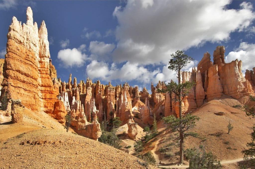 The well-known orange rocks in Bryce canyon